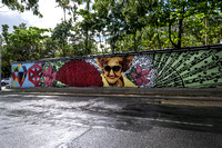 Walk along Avenida Munoz Rivera - Wall dedicated to the first woman mayor of San Juan, Dona Fela.